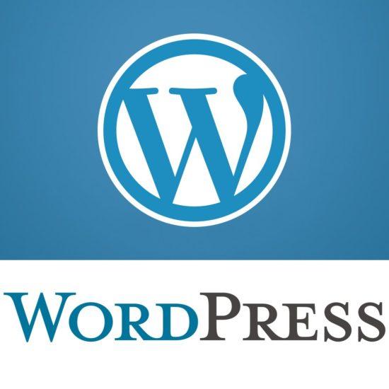 Wordpress blocca gli aggiornamenti automatici